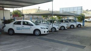FLEET OF OUR NEW COURTESY VEHICLES